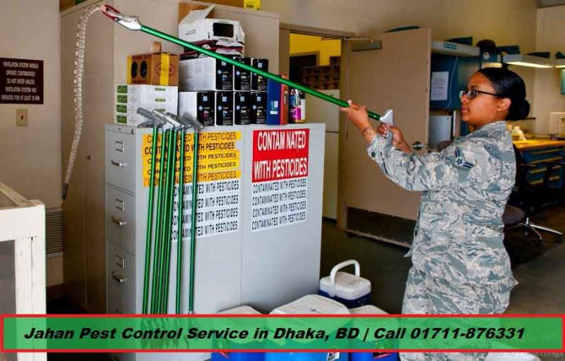 Pest control service in Dhaka