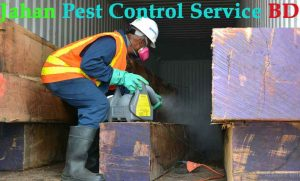Quality pest control in dhaka
